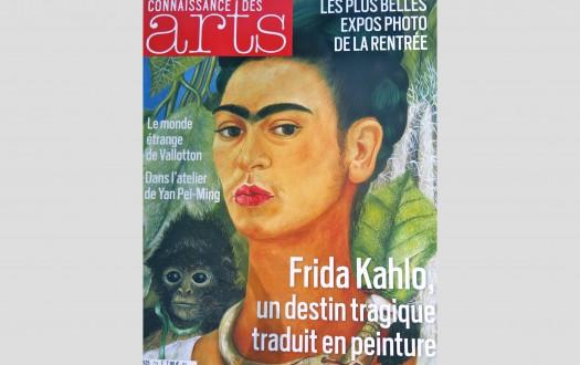 Connaissance des Arts_Annina Roescheisen_october 2013